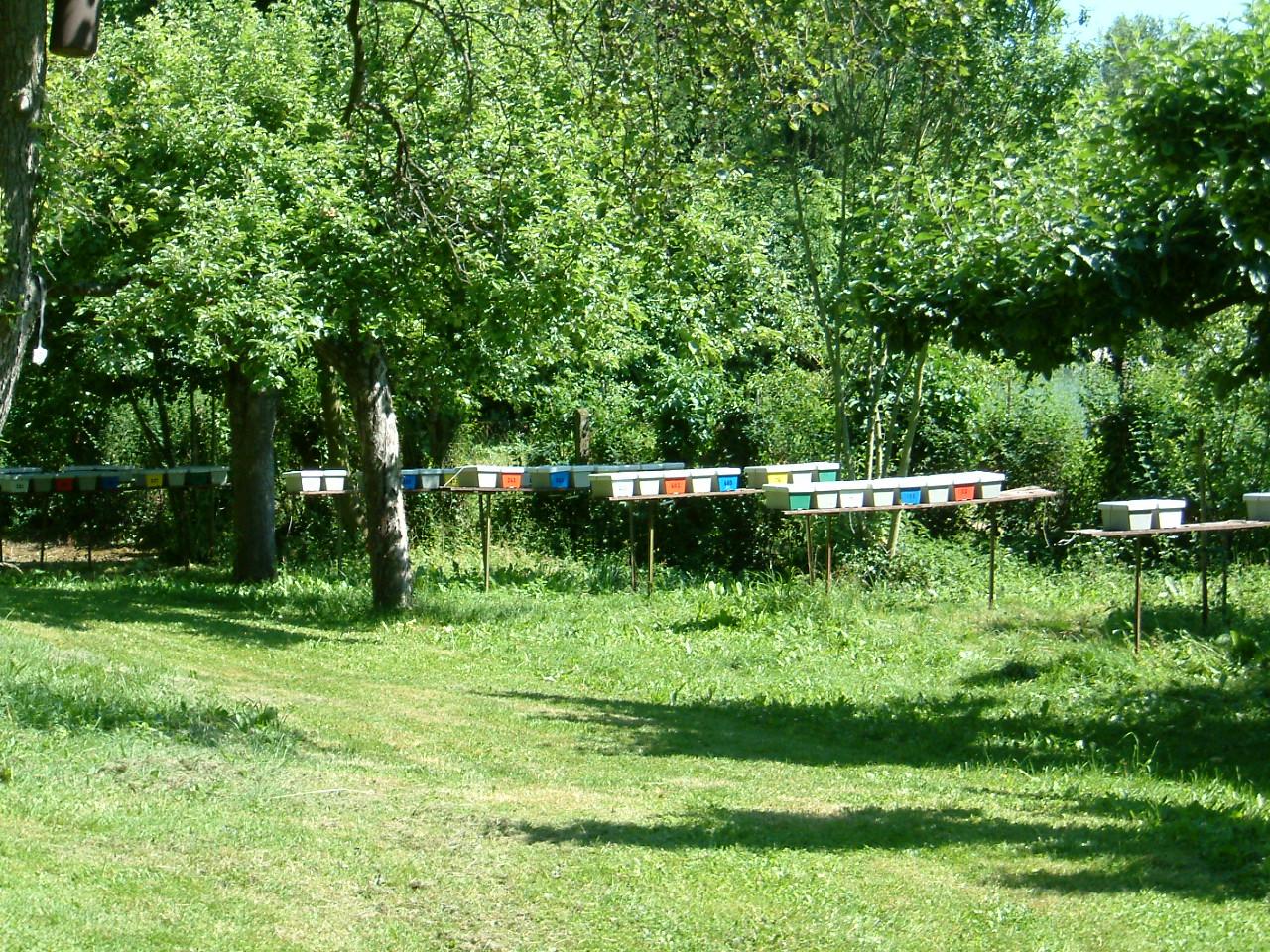Visite de l'institut d'élevage de Mayen 2005